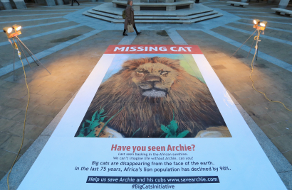 giant-missing-cat-poster---paternoster-square-london---29th-jan-2019_46917217961_o.jpg